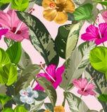 Floral seamless pattern4 Stock Photos