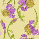 Floral seamless pattern with irises Stock Images
