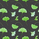 Floral seamless pattern with japanese gingko biloba leaves, vintage pastel green texture, fabric print, wallpaper. Floral seamless pattern with realistic royalty free illustration