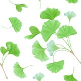 Floral seamless pattern with japanese gingko biloba leaves, vintage pastel green texture, fabric print, wallpaper. Floral seamless pattern with realistic stock illustration