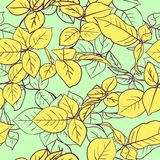 Floral seamless pattern with leaves Stock Photography