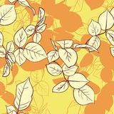Floral seamless pattern with leaves Royalty Free Stock Photography