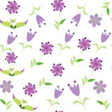 Floral seamless pattern with lilac flower. Seamles Royalty Free Stock Photography