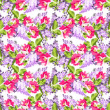 Floral seamless pattern with lilac flowers and rose hips Stock Images