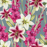 Floral seamless pattern with lilies Stock Images