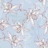 Floral seamless pattern with lily Stock Photos
