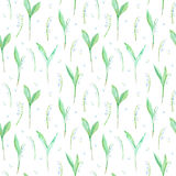 Floral seamless pattern of a lily of the valley flowers. Watercolor hand drawn illustration.White background Royalty Free Stock Images