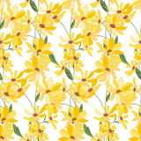 Floral seamless pattern made of yellow daisy flowers. Endless texture for  design, decoration,  greeting cards, posters,  invitations, advertisement Stock Photography