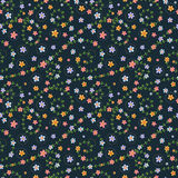 Floral seamless pattern with multicolored flowers Stock Images