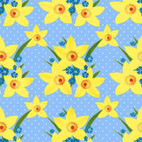 Floral seamless pattern with narcissus texture on dotted Royalty Free Stock Photo