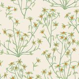 Floral seamless pattern. Flower background. Flourish wallpaper w Stock Image