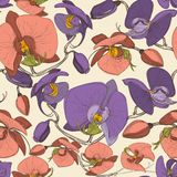 Floral seamless pattern. Ochid flowers vector illustration