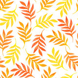 Floral seamless pattern with orange leaves on white background Stock Photo