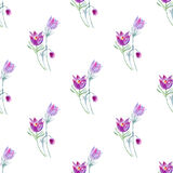 Floral seamless pattern with pasque flowers. Stock Photo