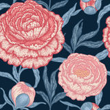 Floral seamless pattern with peony flowers. Stock Images