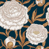 Floral seamless pattern with peony flowers. Royalty Free Stock Photography