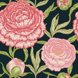 Floral seamless pattern with peony flowers. Royalty Free Stock Images