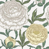 Floral seamless pattern with peony flowers. Royalty Free Stock Photo