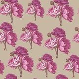 Floral seamless pattern with persian buttercup and peonies Stock Image