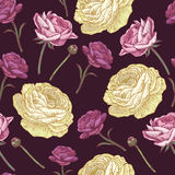 Floral seamless pattern with persian buttercup and roses. Royalty Free Stock Photography