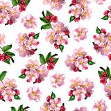 Floral seamless pattern with pink apple flowers branch, blooming flowers, elegance spring floral pattern, print design. Hand drawn watercolor illustration on stock illustration