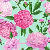 Floral Seamless Pattern with Pink Peony Flowers. Spring Blooming Flowers Background for Fabric, Wedding Decoration. Floral Seamless Pattern with Pink Peony Royalty Free Stock Photos