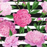 Floral Seamless Pattern with Pink Peony Flowers. Spring Blooming Flowers Background for Fabric, Wedding Decoration. Floral Seamless Pattern with Pink Peony Royalty Free Stock Image