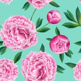 Floral Seamless Pattern with Pink Peony Flowers. Summer Blooming Background for Fabric, Prints, Wedding Decoration. Invitation, Wallpapers. Vector illustration Stock Images