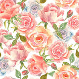 Floral seamless pattern with pink. red roses in watercolor. Desi Stock Image