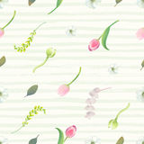 Floral seamless pattern with pink tulips, flower buds, inflorescences and leaves against pale green paint stripes on Royalty Free Stock Images