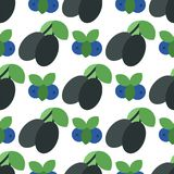 Floral seamless pattern with plums nature fruit harvest vegetarian vitamin sweet berry background vector illustration Stock Photography