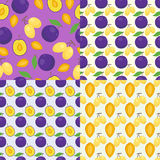 Floral seamless pattern with plums nature fruit harvest vegetarian vitamin sweet berry background. Vector illustration Stock Image