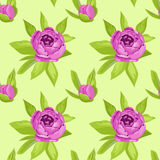 Floral seamless pattern in purple flowers for textile print, book cover, wallpaper, manufacturing, wrap, scrapbooking Royalty Free Stock Photo
