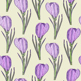 Floral seamless pattern with purple realistic flowers. Vector illustration for wrapping or textile design Stock Photo