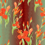 Floral seamless pattern. Red iris flower background. Royalty Free Stock Photo