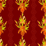 Floral seamless pattern. Red iris flower background. Stock Photography
