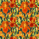 Floral seamless pattern. Red iris flower background. Stock Image