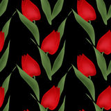 Floral seamless pattern red tulips illustration black background Stock Image