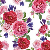 Floral seamless pattern with roses and crocuses Royalty Free Stock Photo