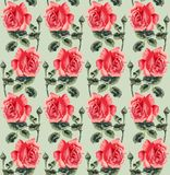 Floral seamless pattern (roses) Stock Image