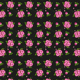 Floral seamless pattern . Stock Photos