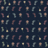Floral seamless pattern and seamless pattern in sw Royalty Free Stock Image