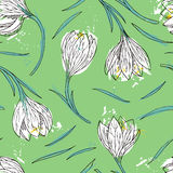 Floral seamless pattern with snowdrops Stock Image