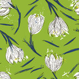 Floral seamless pattern with snowdrops Royalty Free Stock Photography