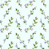 Floral seamless pattern with spring branches with flowers. Apple or cherry tree. Hand drawn watercolor illustration on. Floral seamless pattern with spring stock illustration