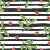 Floral seamless pattern with stripes. Stock Photos