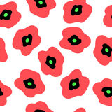 Floral seamless pattern with stylish poppies on a white backgrou. Floral seamless pattern with a stylish poppies on a white background Royalty Free Stock Images