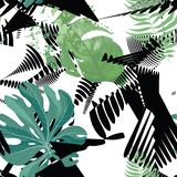 Floral seamless pattern. Tropical leaves background stock illustration