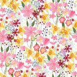 Floral seamless pattern with tulips and daffodils. Royalty Free Stock Images