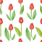 Floral seamless pattern Tulips (red flowers with green leafs). Aquarelle Red tulips. Tulip garden as seamless background. Red tulips pattern on white seamless Stock Images